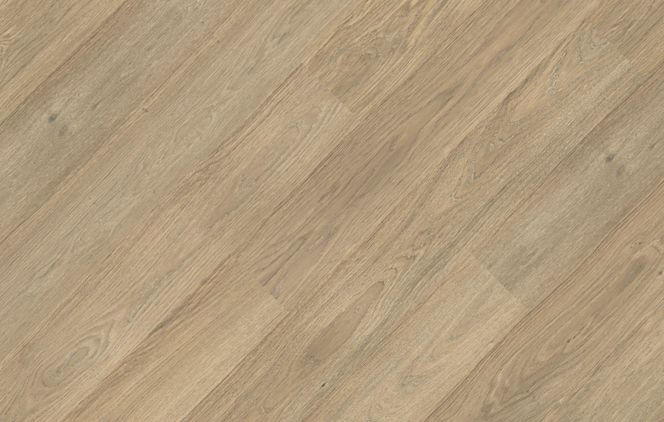 Oak Color Avorio Jawor Parkiet Manufacturer Of Wooden